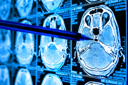 AI in Clinical Image Analysis: Emerging Opportunities